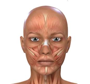 Facial Exercising - Face Muscles